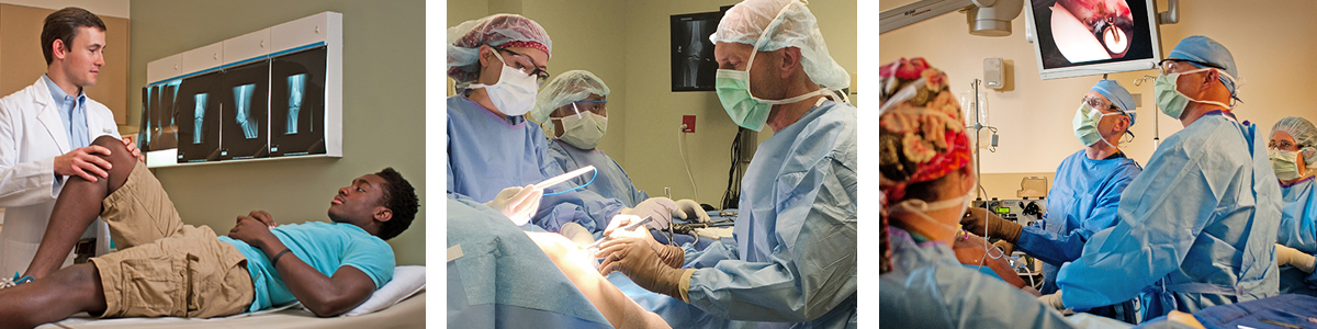 orthopedic surgeon neurologist and plastic surgeon essay Doctors give unbiased, helpful information on indications, contra-indications, benefits, and complications: dr coats ii on neurosurgeon versus orthopedic surgeon: both of them should be trained in doing these surgeries.