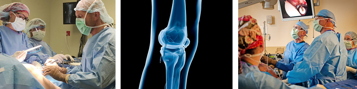 Top Orthopedic Surgeons at Northeast Georgia Physicians Group